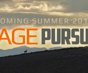 Sage Pursuit – Antelope Teaser
