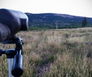 Hunting with Spotting Scopes
