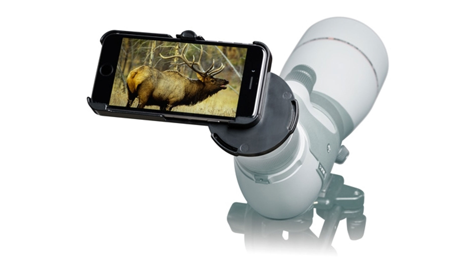 use cell phone to take hunting photos