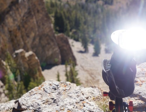 Digiscoping: The Best Way to Take Photos & Video through Your Optics